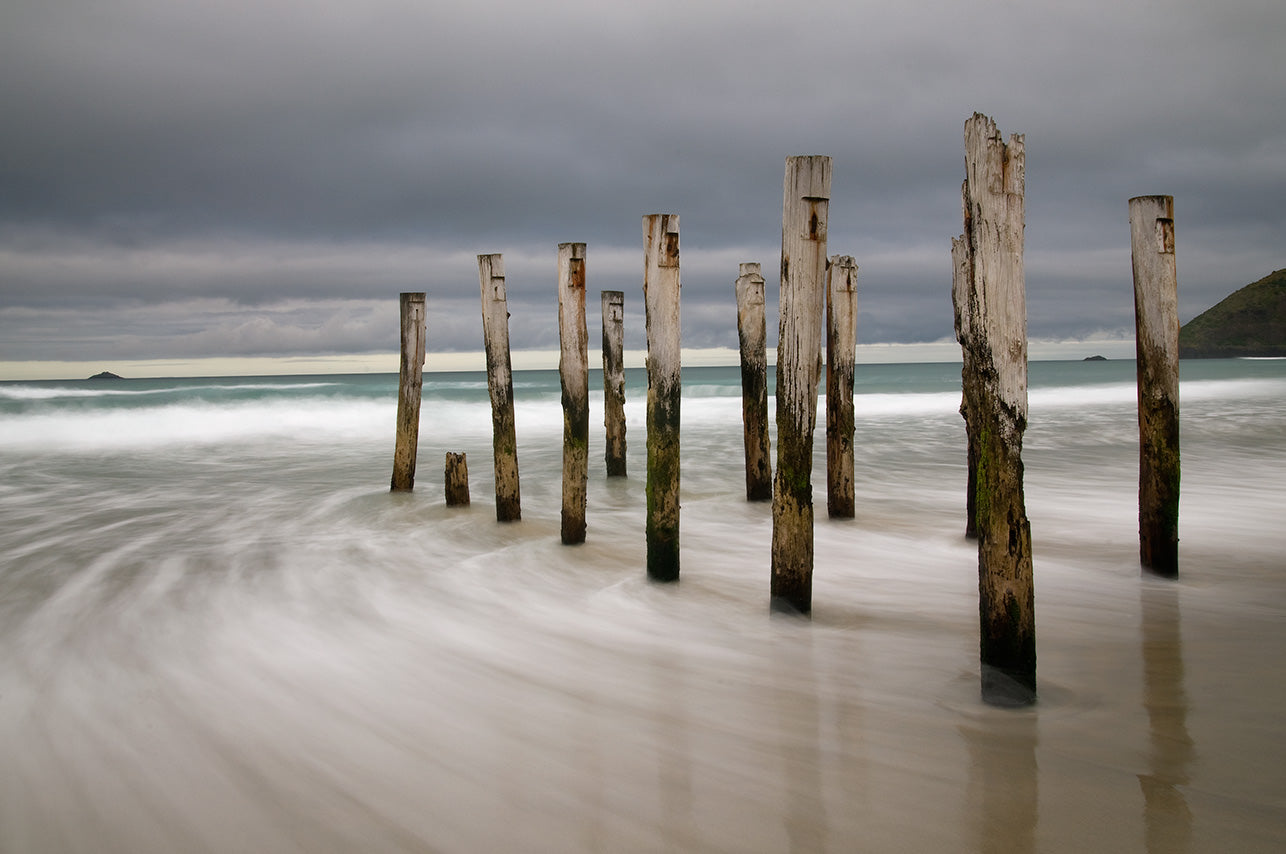 Old Wooden Piles, St Clair Beach, Dunedin