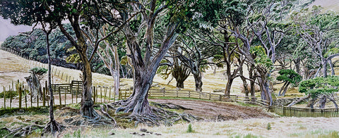 Old Trees, Thames-Coromandel Road