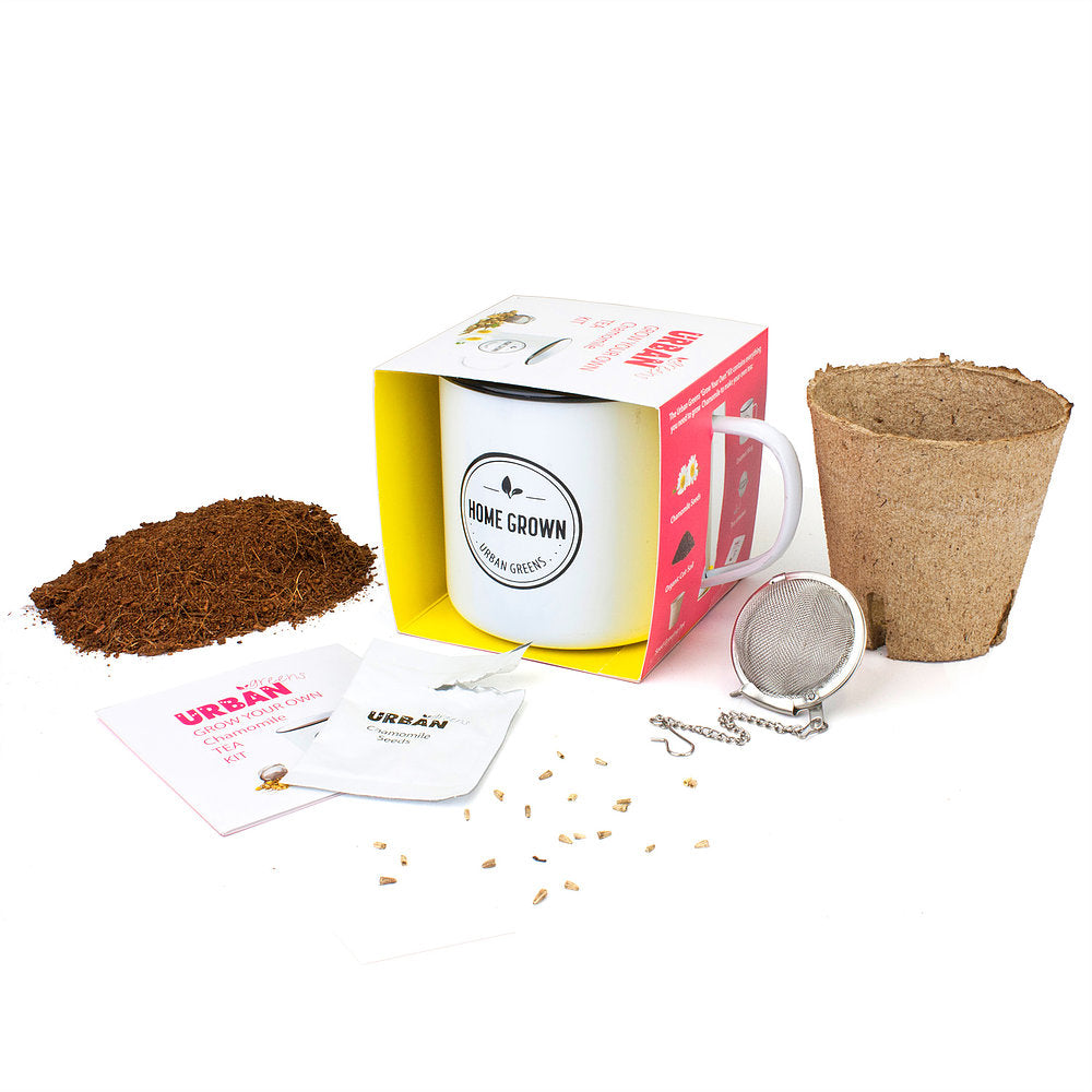 GROW YOUR OWN CHAMOMILE TEA GROW KIT