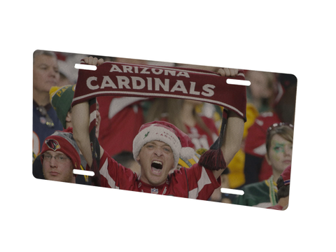 Arizona Cardinals Custom Metal Photo