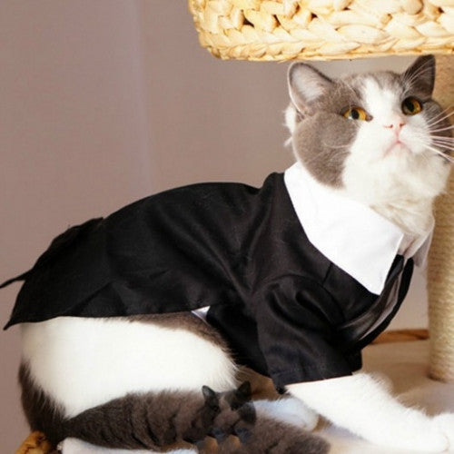 Cats Tuxedo Formal Wedding Party Suit