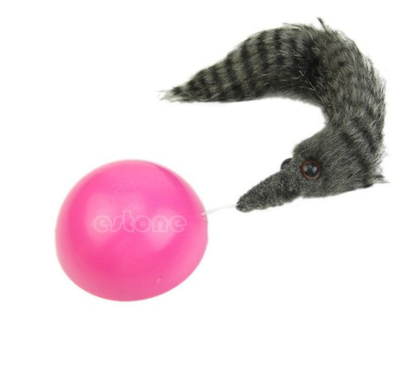 Weasel Rolling Motor Ball Chaser Toy
