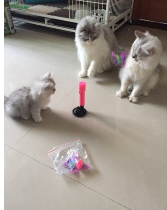 Automatic Electric Cat Stick Toy
