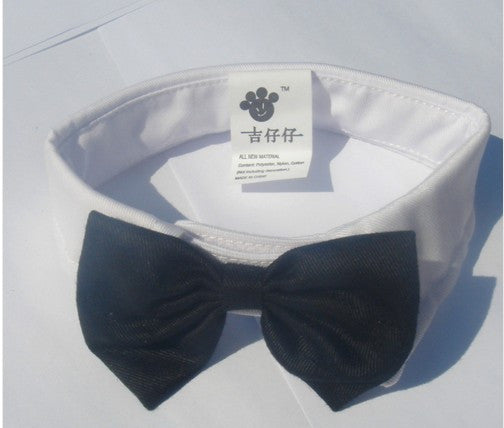 White Black Bow Tie Pet Collar