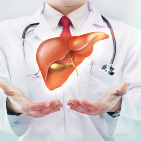 Treatment of Liver Disease/Damage
