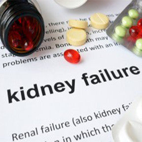 Save Your Kidneys from Diabetes: Get Aware