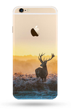 Ultra Thin Soft Silicone  Phone Case for iPhone 6 FREE +Shipping Offer