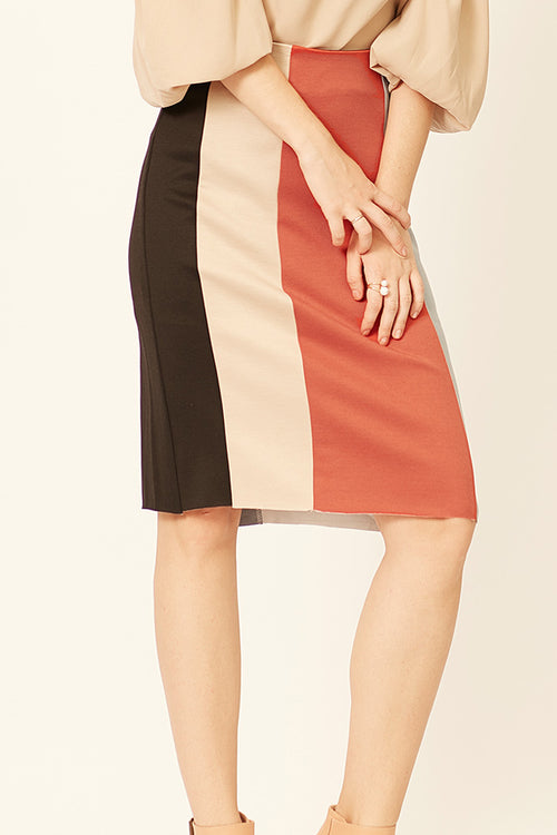 Clara Color Block Pencil Skirt