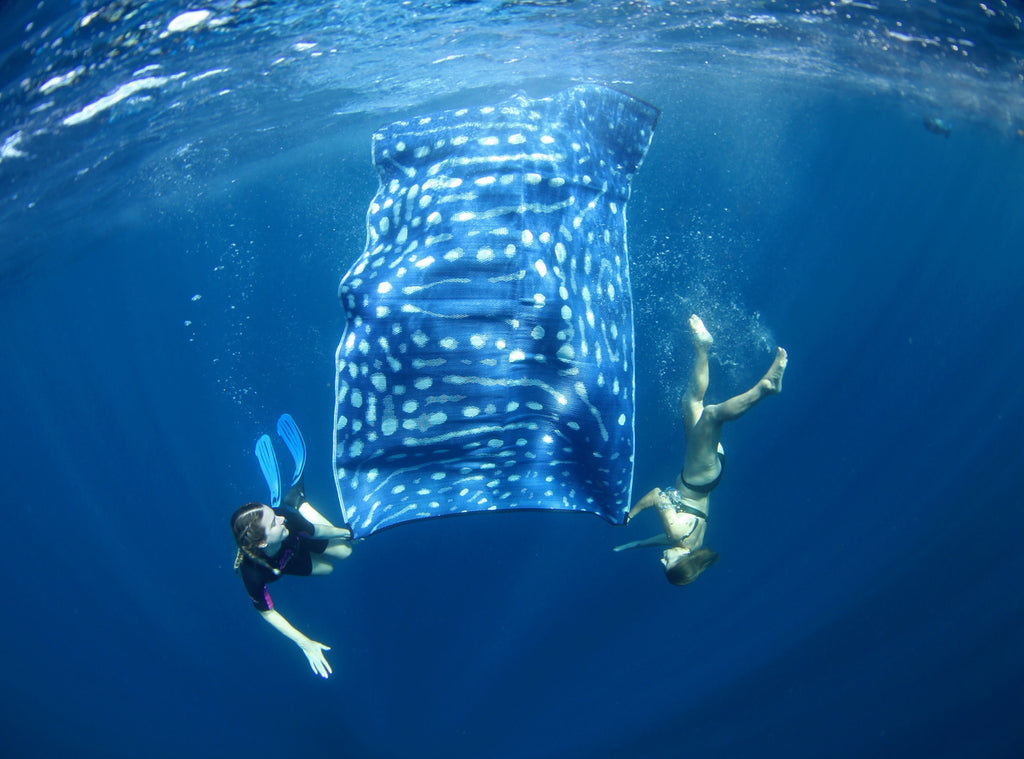 Recycled ECO Mats - Whale Shark - Ningaloo - 1.8x2.7m