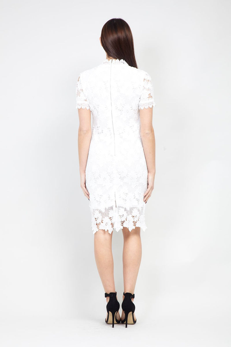 White | High Neck Lace Dress