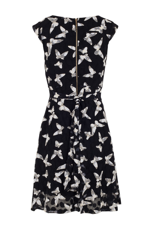 Butterfly Print Tea Dress - Izabel London