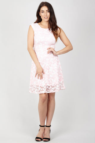 Lace and Chiffon Two in One Skater Dress