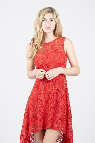Leaf Lace Overlay Dress