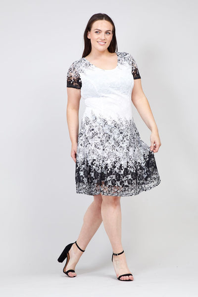 Black | Floral & Lace Skater Dress