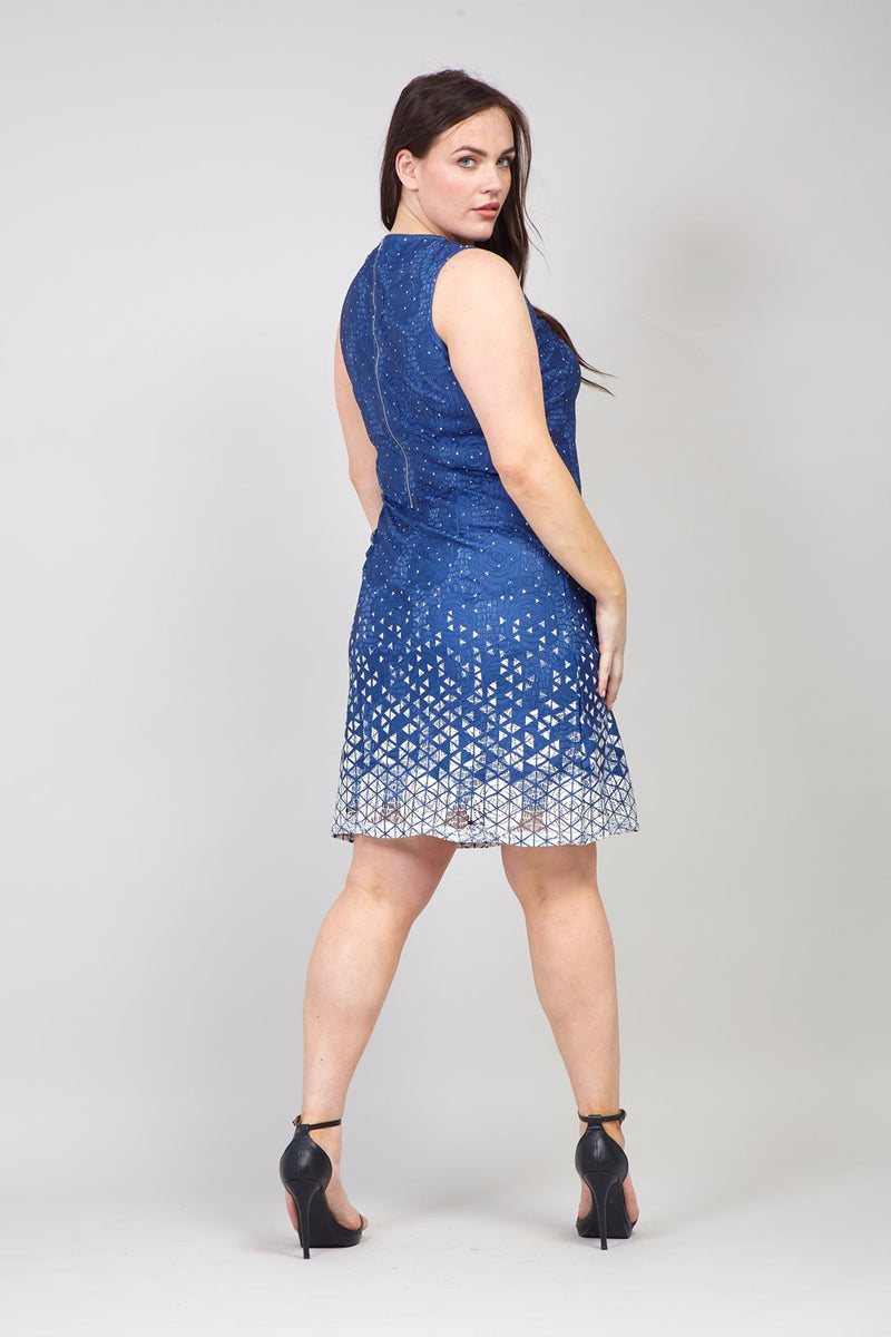 Blue | Curve Floral Lace Overlay Dress