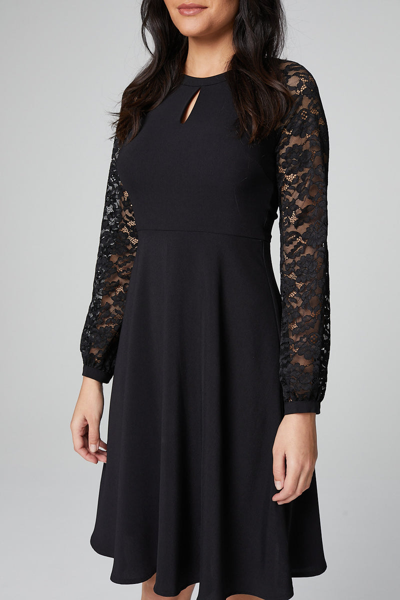 Black | Sheer Lace Sleeve Fit & Flare Dress