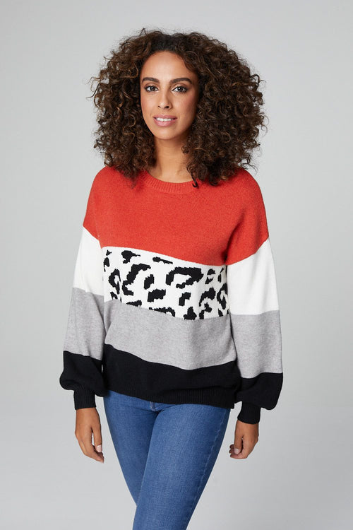 Animal Print Colour Block Knitted Jumper