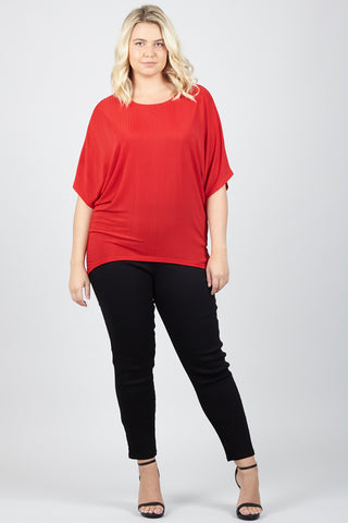 Plus Size Net Top With Lace Hemline