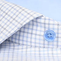 Non-Iron Charles Windowpane