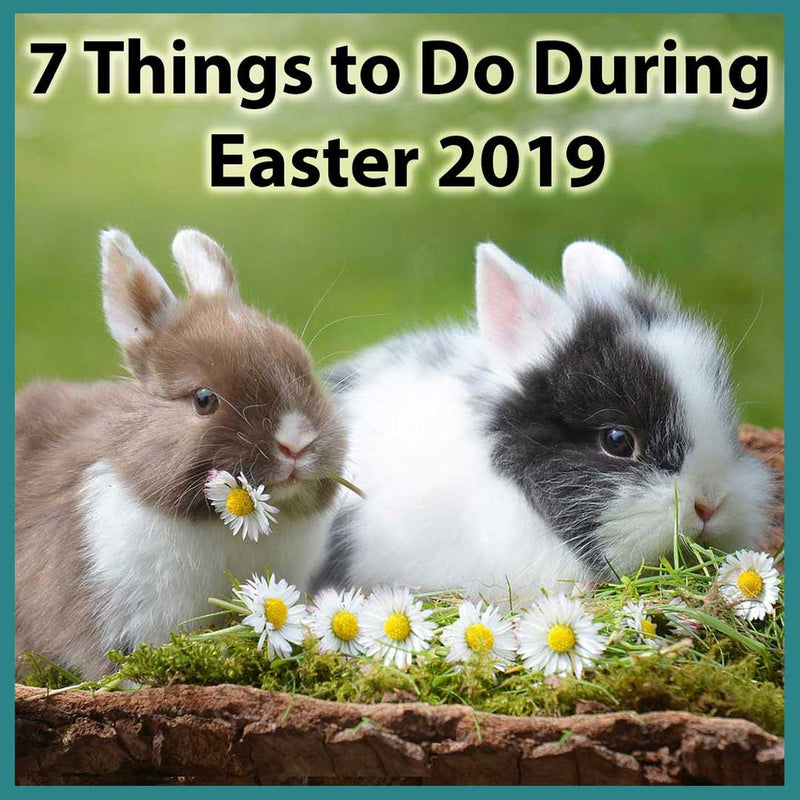 7 Things to Do During Easter 2019