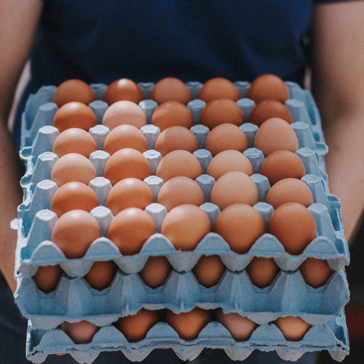 Free Range - Medium Fresh Eggs (x6)