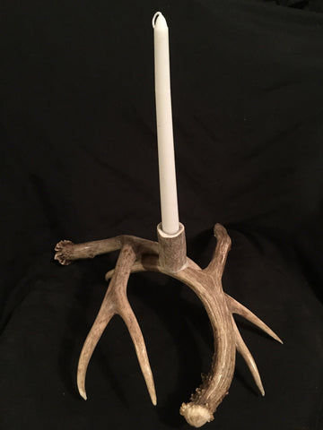 Mule Deer Antler Candle Holder