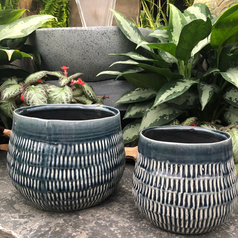 Painted Styled Pots