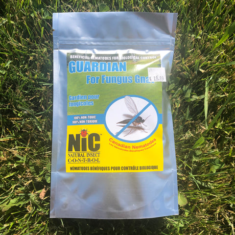 Guardian For Fungus Gnats
