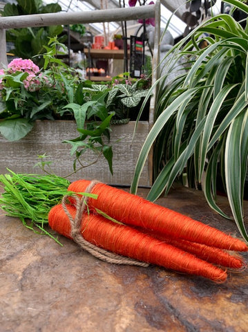Decorative Carrot Bunches (4418115698771)