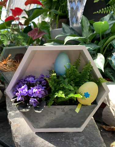 Easter Wall Planter DIY (4420612685907)