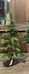 Table Top Evergreen Trees (Set of 3)