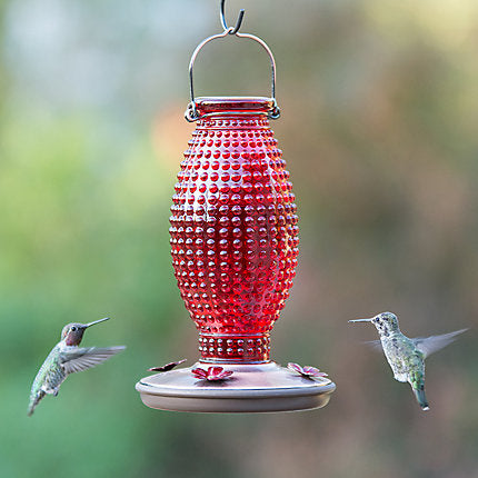 Hummingbird feeder (4415609798739)