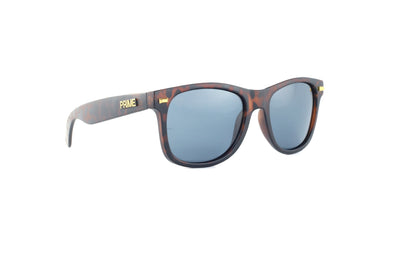 Franklin / Black Polarized