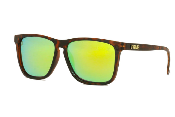 Gloss Franklin / Gold Blaze Polarized | Duster