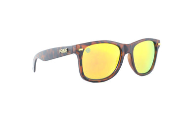 Franklin / Gold Blaze Polarized