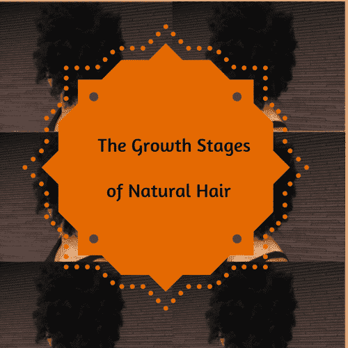The Growth Stages of Natural Hair
