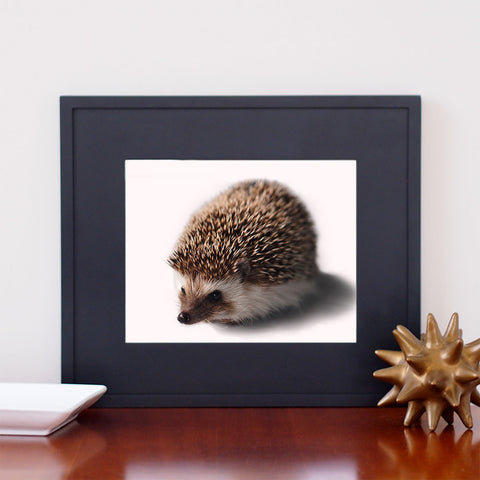 Hedgehog Art - Giclee Print