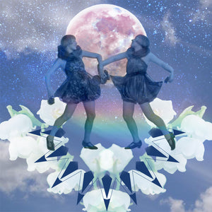 INTEGRATION & INQUISITIVENESS: New Moon in Gemini, June 13, 2018