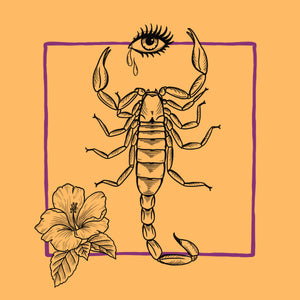 Scorpio: The Evolutionary Alchemist & The Shadow Shaman