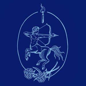 Sagittarius: Season of Celebrating & Navigating Your North Star