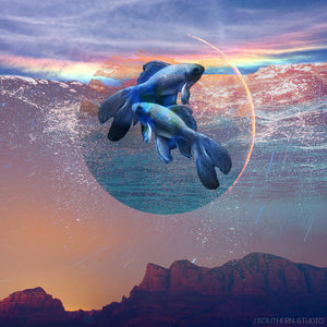 Spiritual Transformations: New Moon in Pisces, March 6th, 2019
