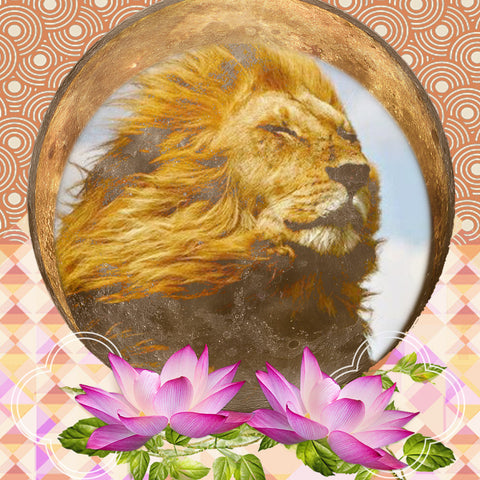 August 11 New moon in leo