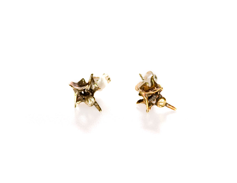 Snake Vertebrae Stud Earrings