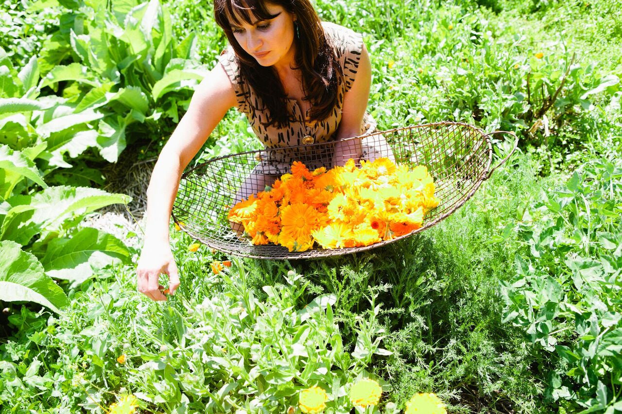Herbalist + devoted Environmentalist - Sarah Buscho from Earth to Face