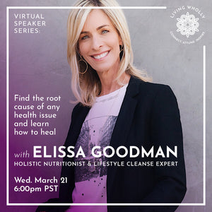 Elissa Goodman Virtual Speaker Series Recorded Webinar