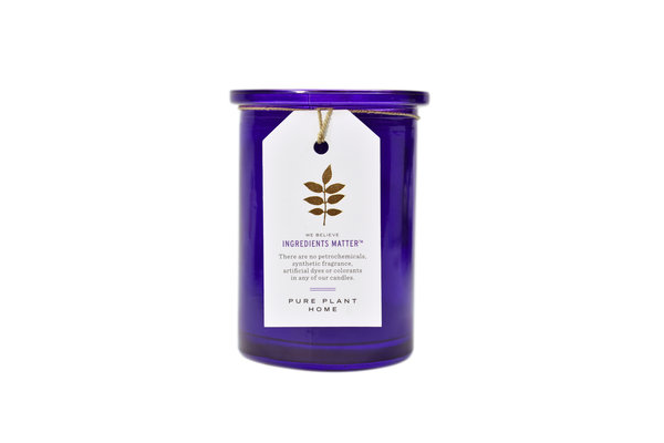 5.5 oz Recycled Purple Glass Wildcrafted French Lavender Coconut Wax w/real essential oils