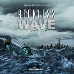 Reckless Wave