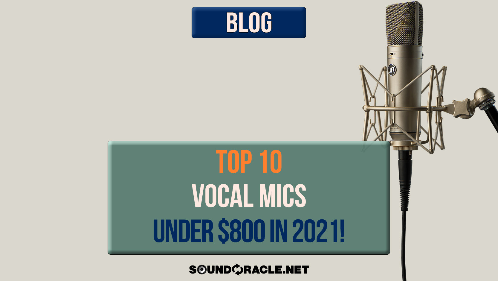 Top 10 Vocal Mics For Under $800 in 2021!