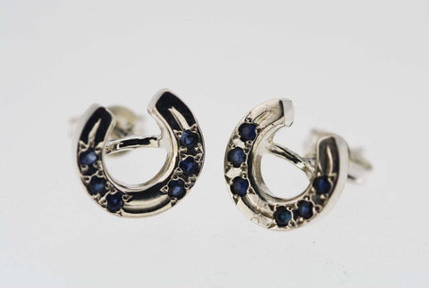 Horse Shoe Earrings - Stones