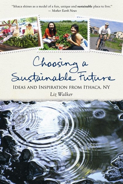 Choosing a Sustainable Future (PDF)